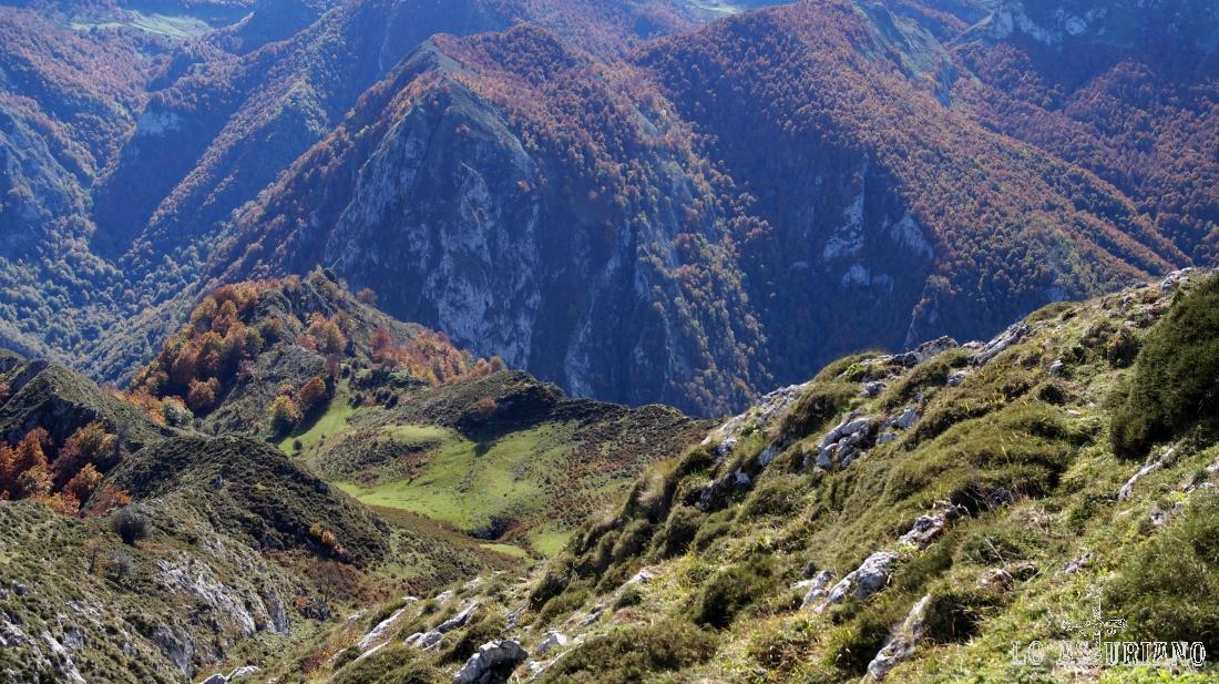 Hacia el este, la ladera por la que hemos subido y el bosque de Peloño, al fondo.