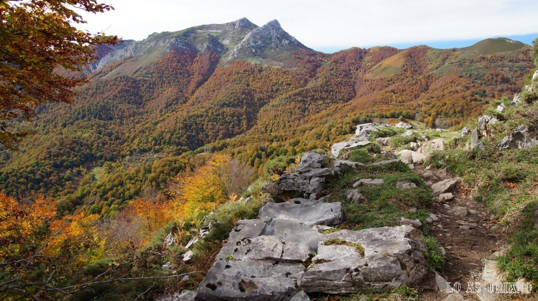 Este es nada menos que nuestro caminito, con el bosque de Peloño al fondo.