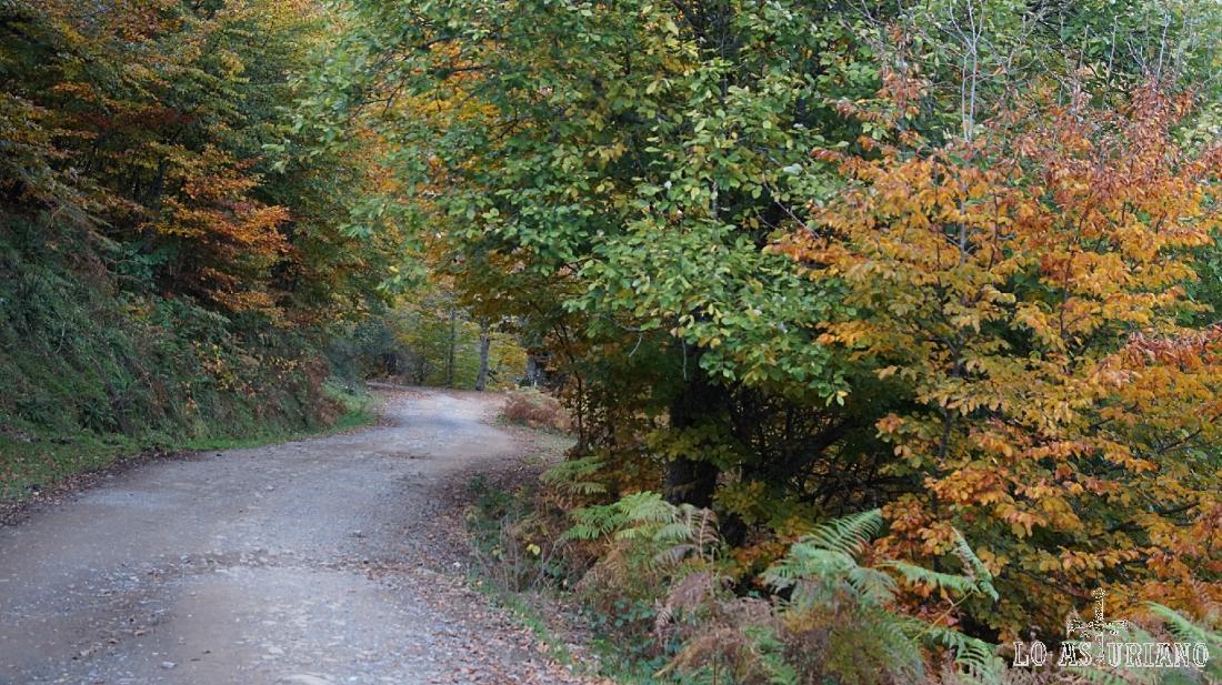 Caminando por la pista de Peloño, en Ponga.