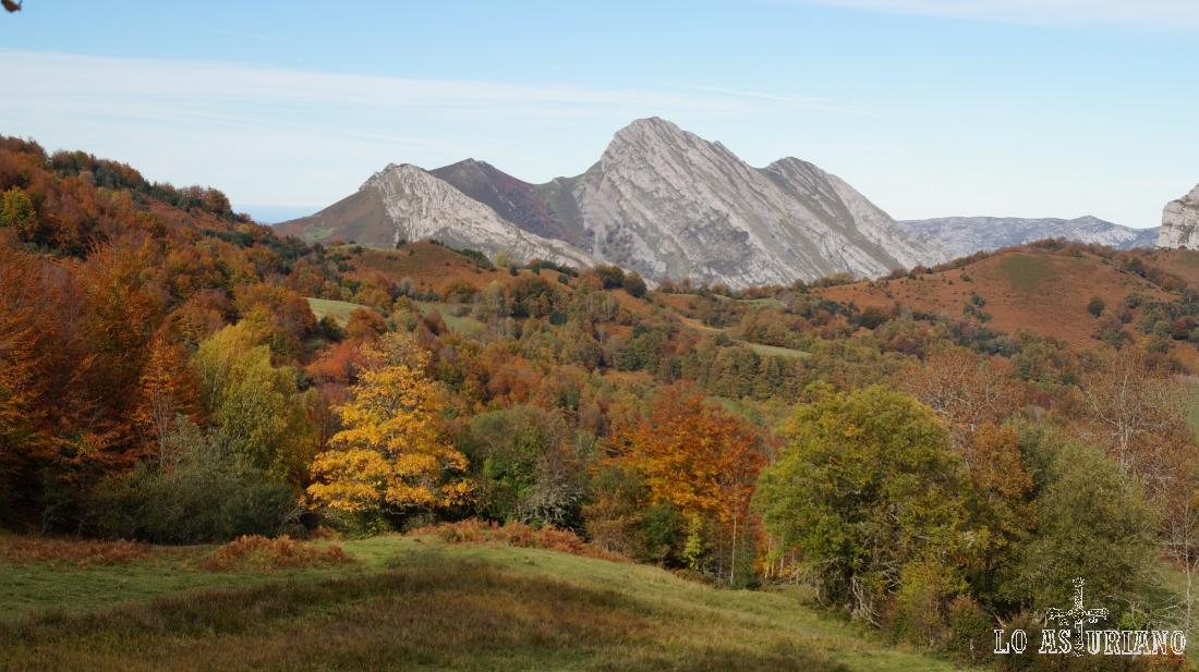 El pico Carriá desde la pista de Peloño.