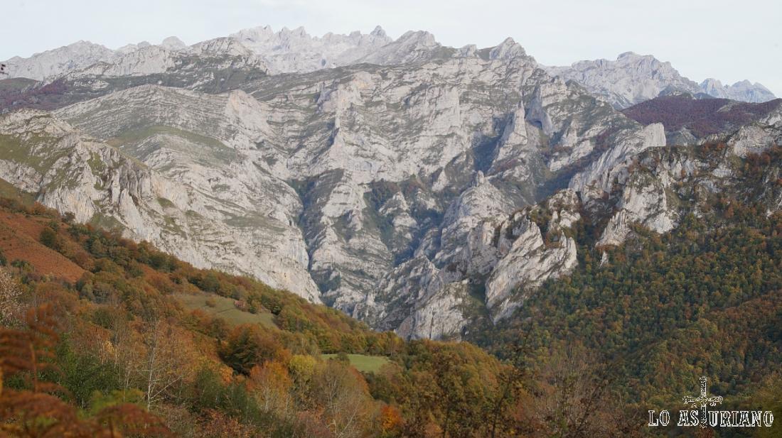 Los murallones calizos de los Picos de Europa, como telón de fondo, en esta maravillosa ruta senderista.