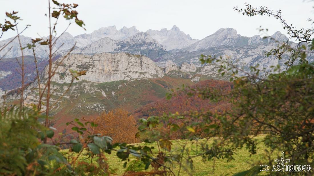 Magnífica la estampa del Parque Nacional de los Picos de Europa, desde el entorno de Les Bedules, Ponga.