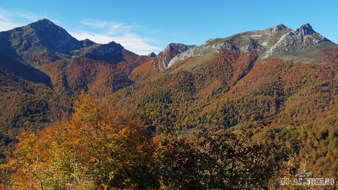 Paisajes de otoño en el bosque de Peloño, Asturias.