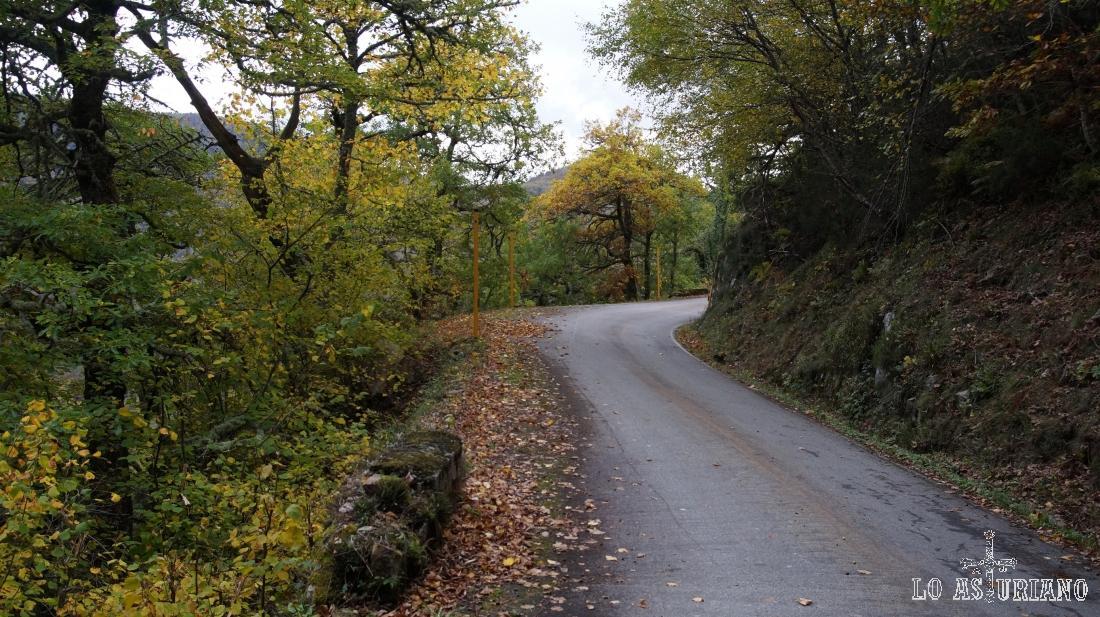 Vamos ascendiendo por esta carretera, muy tranquila, y en la cual es casi imposible que se nos crucen 2 coches a la vez.