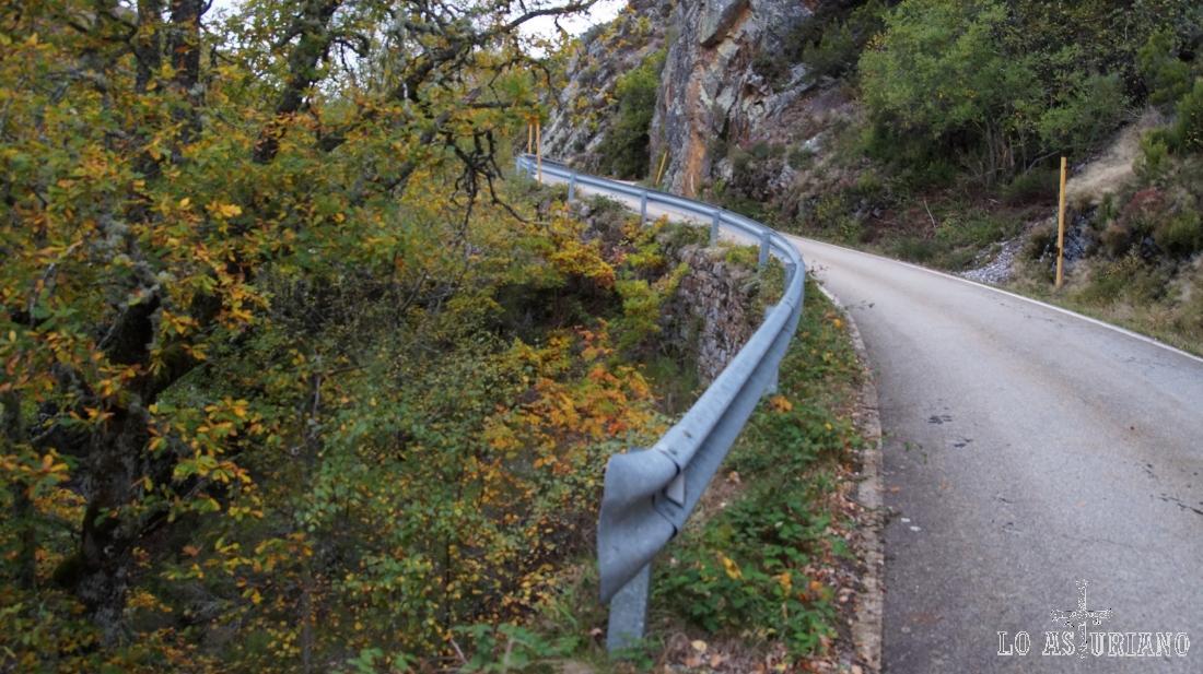 Caminando por la carretera del Connio, poco transitada en general y que te dará la sensación de ir casi por un camino.