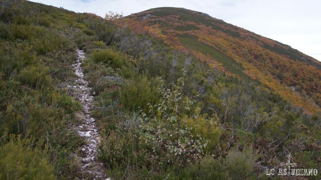 La senda nos conduce a las laderas del piquito Valmayor.