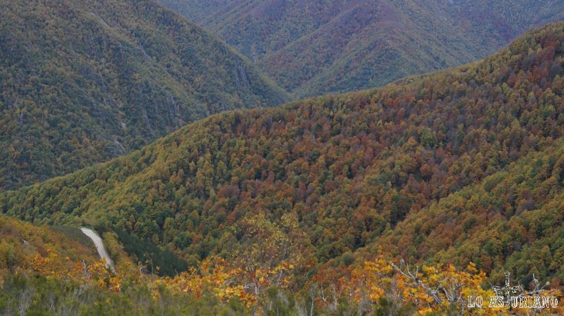 La carreterina del Connio y Muniellos, desde las laderas del pico Valmayor.