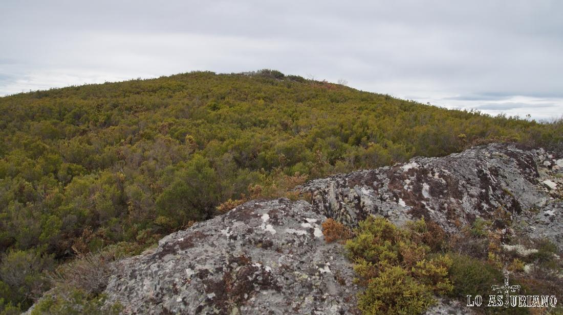 La cima del pico Valmayor es bastante inaccesible, rodeada por vegetación, que hacen complicado el avance.