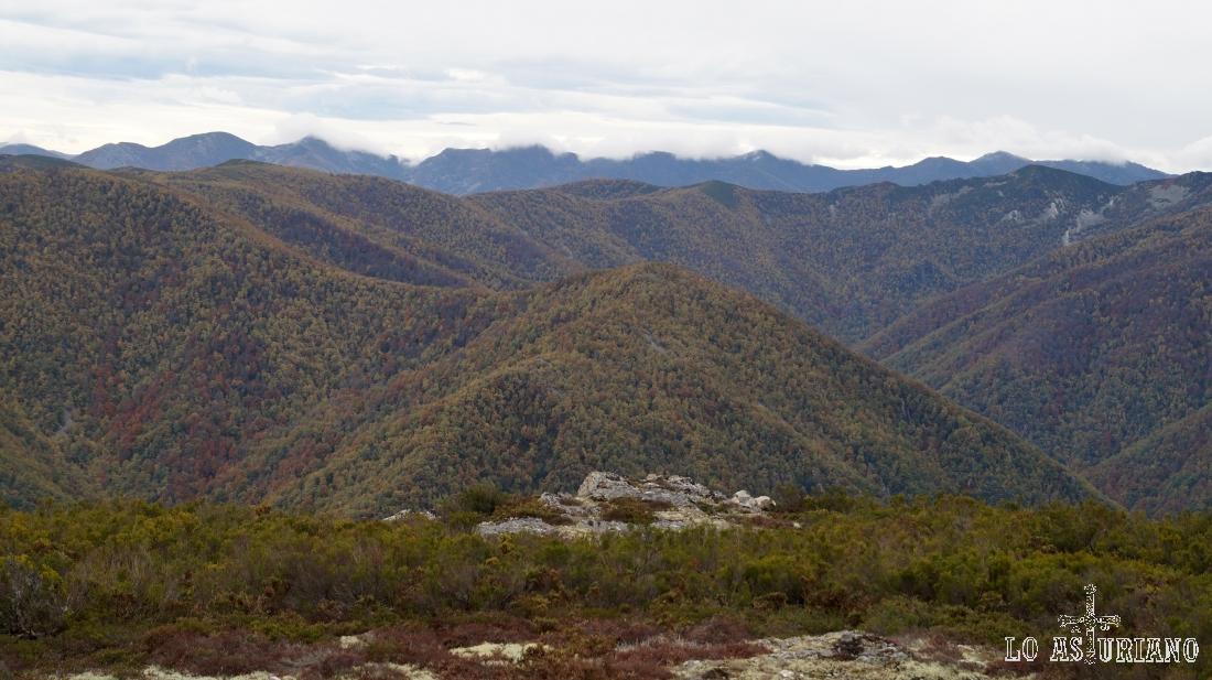 Vistas de Muniellos desde el pico Valmayor.