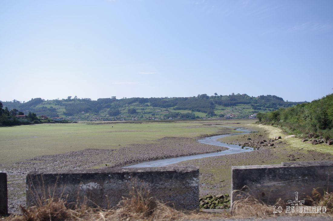 Reserva Natural Parcial de la Ría de Villaviciosa.