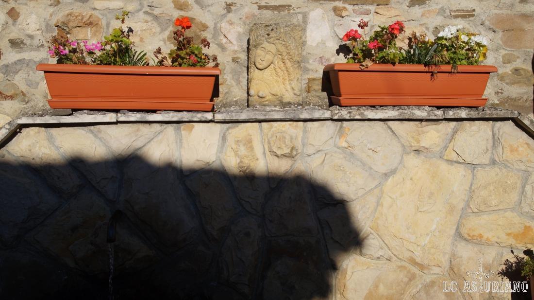 Fuente y plantas en El Pino, Aller.