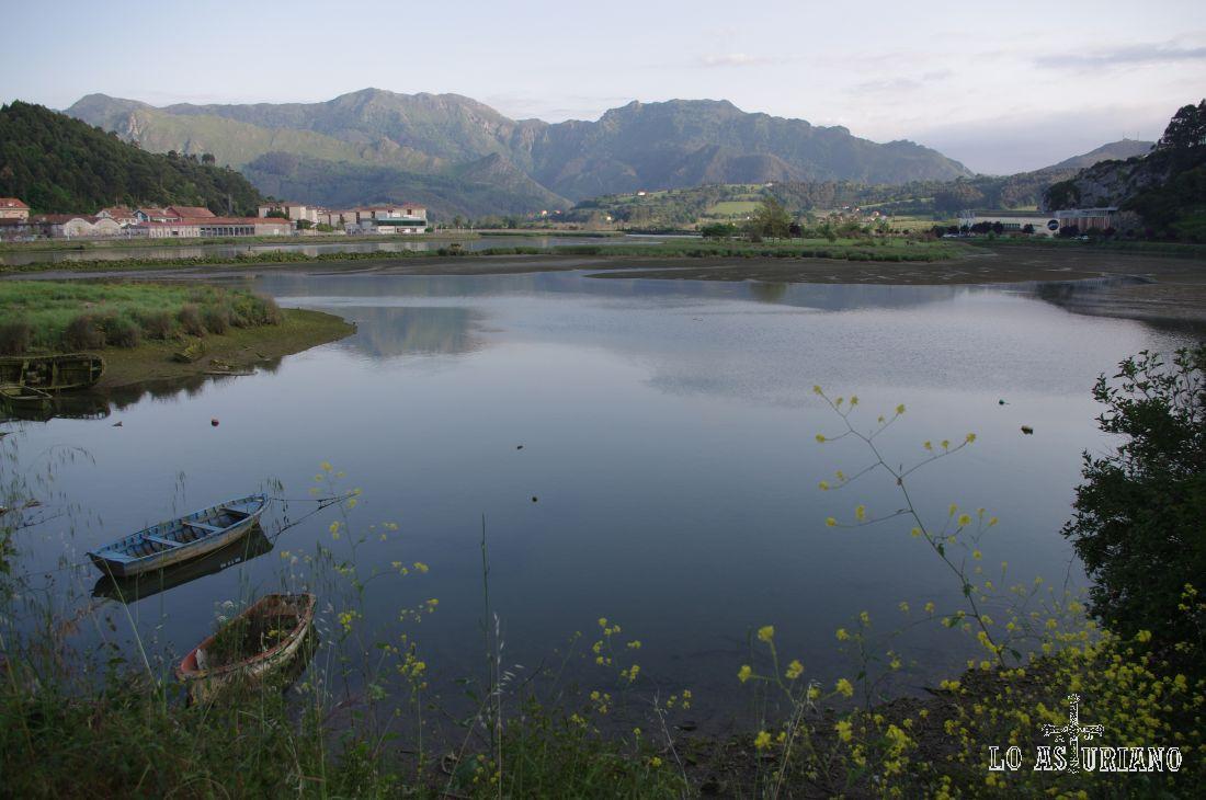 El río Sella (en asturiano Seya) es un corto río costero del norte de España que desemboca en el mar Cantábrico y discurre por la Provincia de León y la Comunidad Autónoma del Principado de Asturias.  Nace en los Picos de Europa en la Fuente del infierno, en el lugar llamado Fonseya, perteneciente a la localidad y municipio de Oseja de Sajambre (provincia de León) y desemboca en el mar Cantábrico formando la ría de Ribadesella. Tiene una longitud de 56 kilómetros y un caudal medio anual de 42,79 m³/s. Su cuenca tiene una superficie de 1.246 km² .