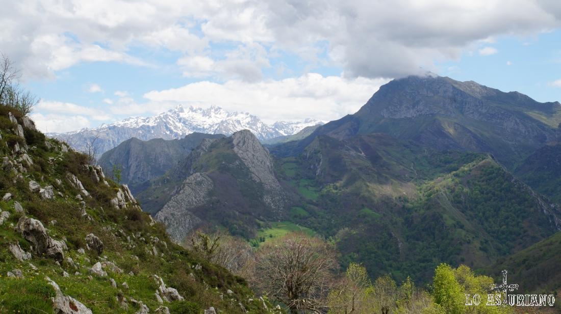 Asoma, al fondo, el macizo occidental de los Picos de Europa.