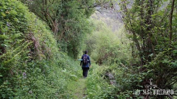 Ruta del valle de Ponga, PR AS 213.