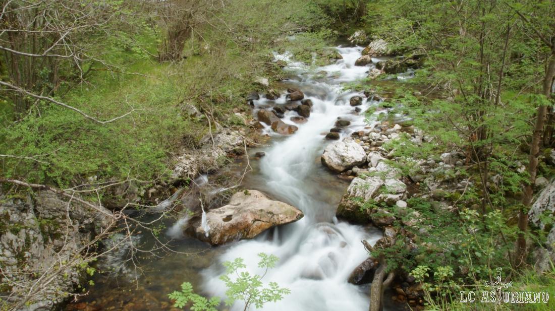 El río Ponga en la zona del cruce.