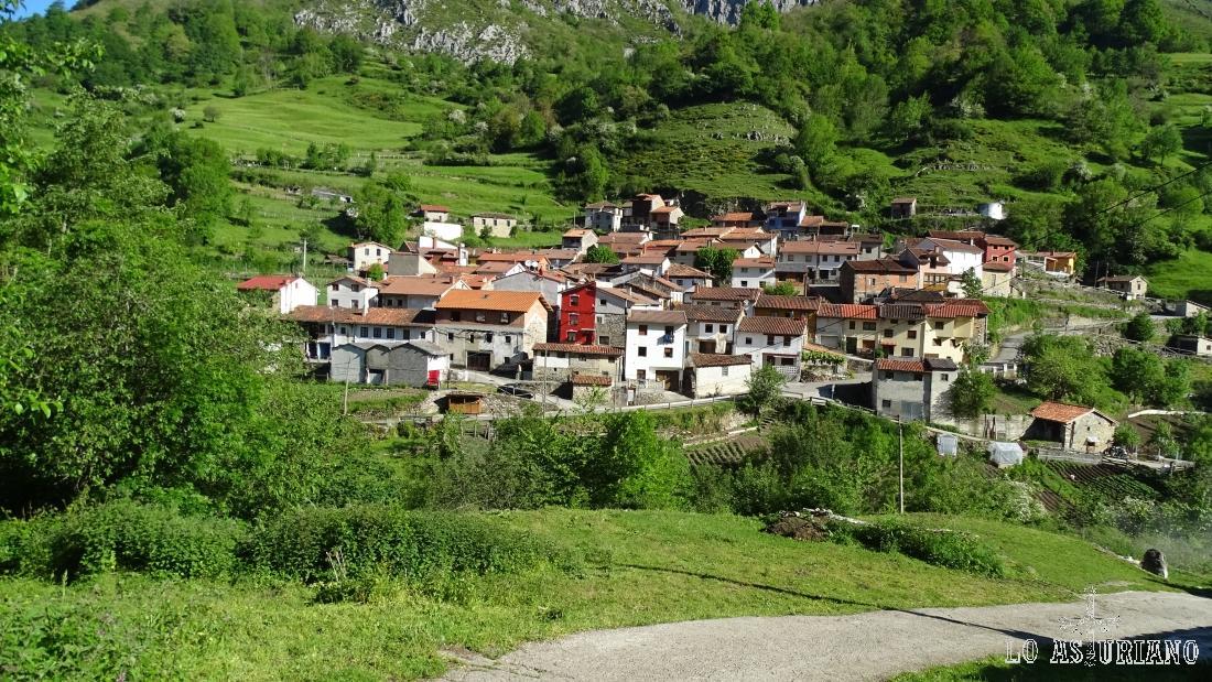 Pendones, en la primavera de Caso, en pleno Parque Natural de Redes, Asturias.