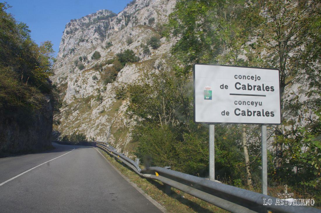 Cabrales nos recibe ya con sus reconocibles montañas.
