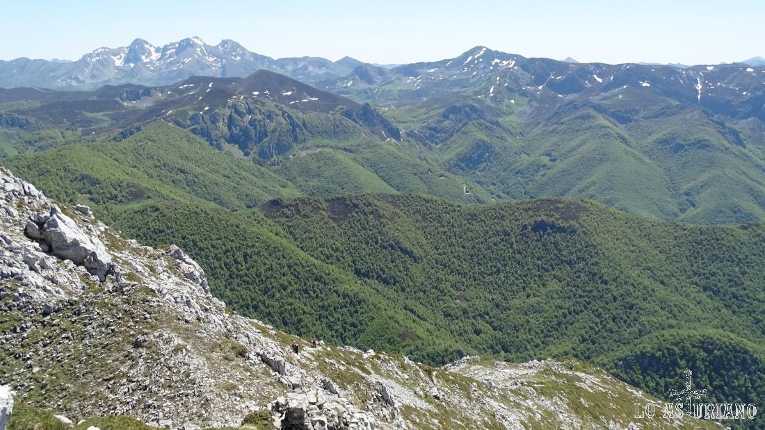 Al fondo, el macizo occidental de los Picos de Europa.