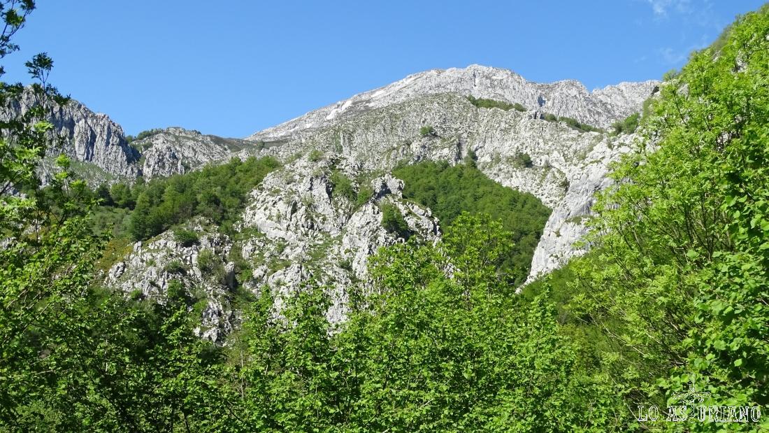 La cima del Tiatordos, rodeada del verdor imponente de la primavera en el Parque Natural de Redes.