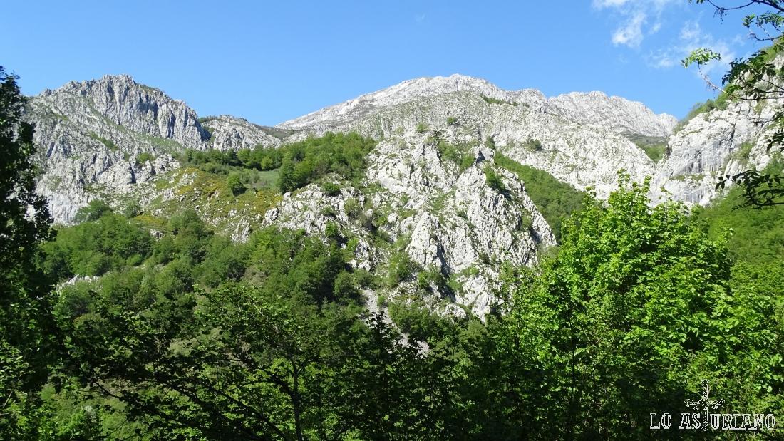 Las paredes calizas del pico Tiatordos emergen con fuerza del verdor casín.