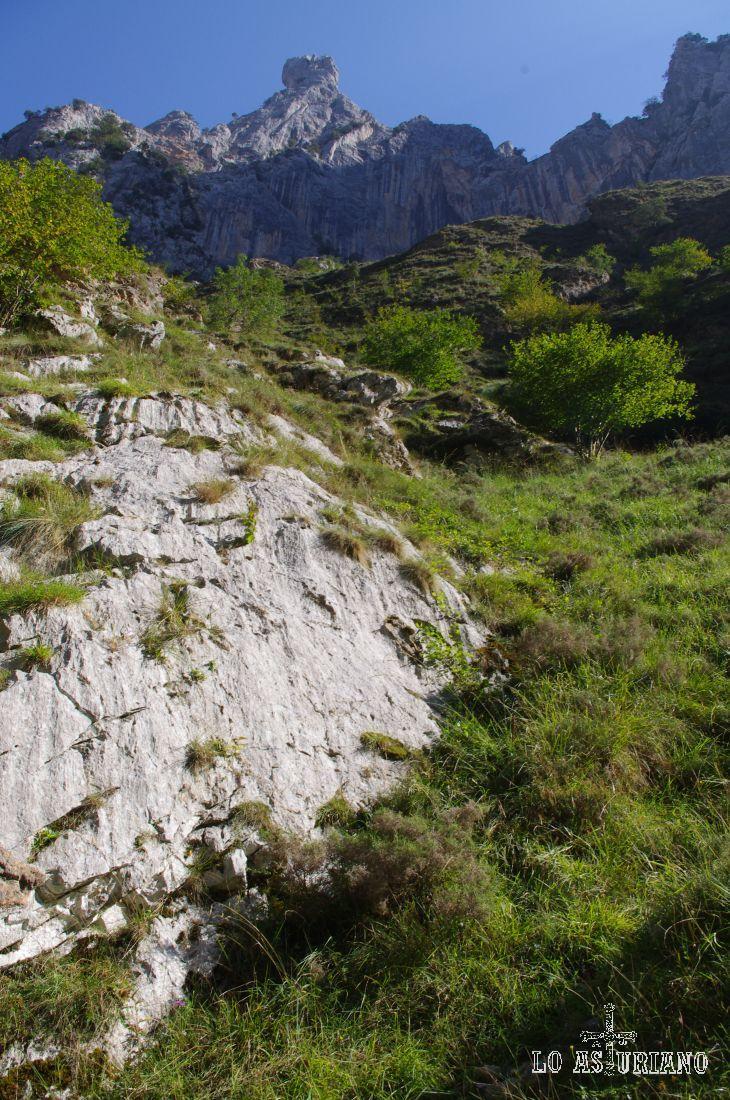 Magníficas laderas escarpadas en esta zona de los Picos de Europa, zona ideal para las aves rapaces, como pudimos ver en la vuelta.
