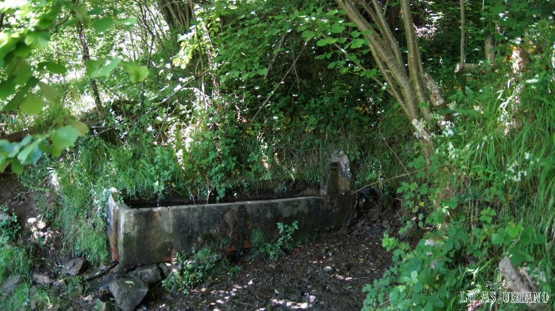 Fuente y abrevadero en el camino a la braña de Cuevas.