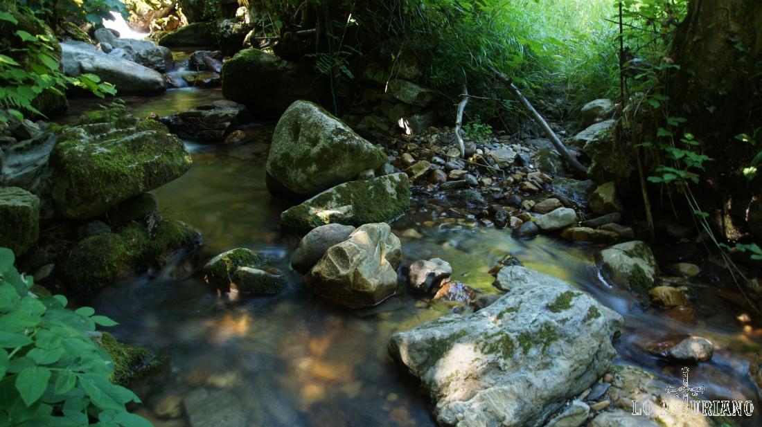 Arroyo en Cuevas, Belmonte de Miranda, camino de la braña del mismo nombre.