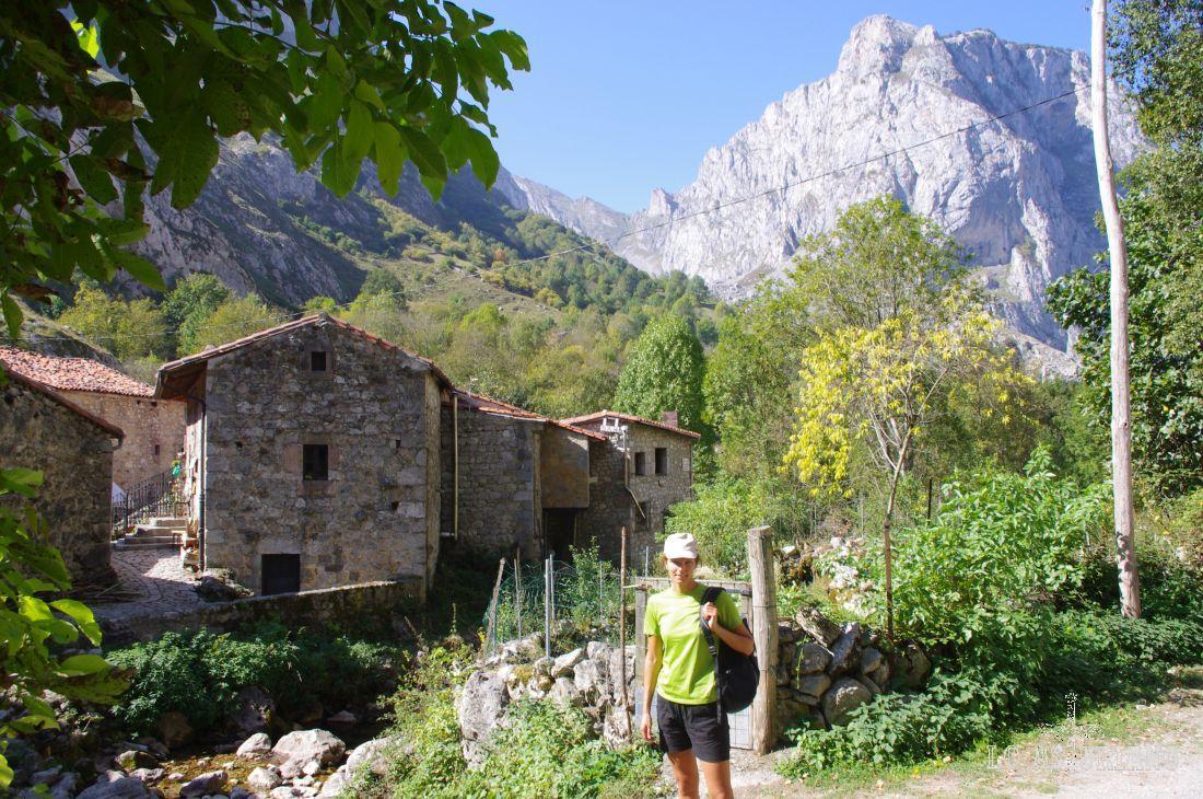 El Tejo y las escasas casas de piedra de la Villa (Bulnes). Al fondo, la mole del Canto Cogullos.