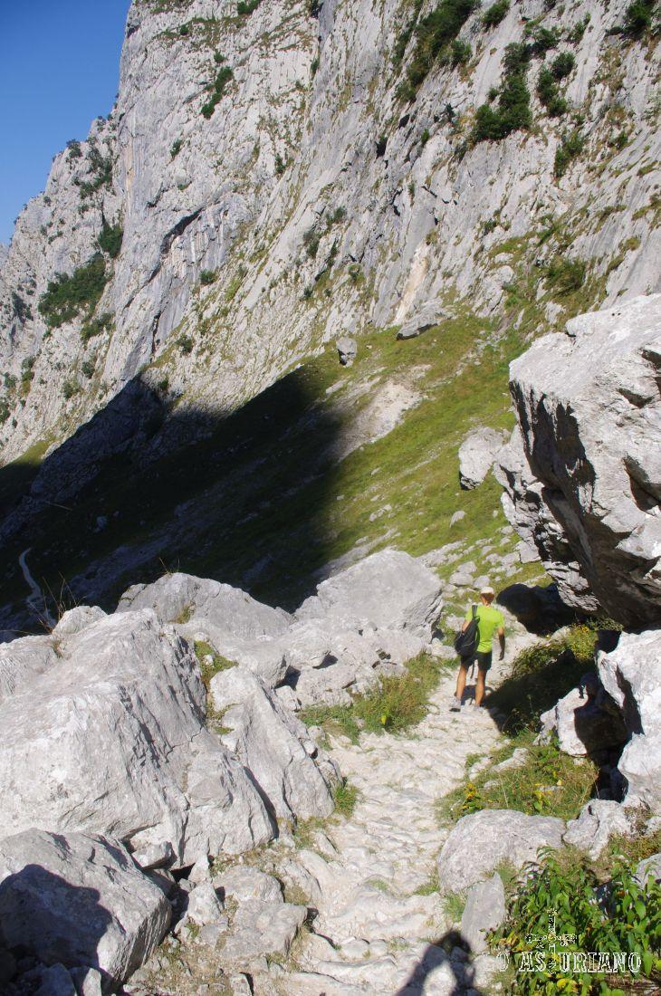 Picos de Europa es un inmenso y laberíntico macizo de piedra caliza carbonífera que ocupa 64.660 hectáreas, superficie  protegida por la declaración de Parque Nacional desde al año 1995.