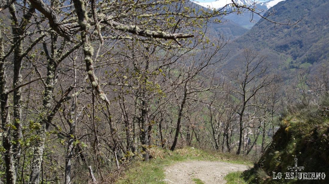 Ruta del Valle de Cibea, en Cangas del Narcea, Asturias.