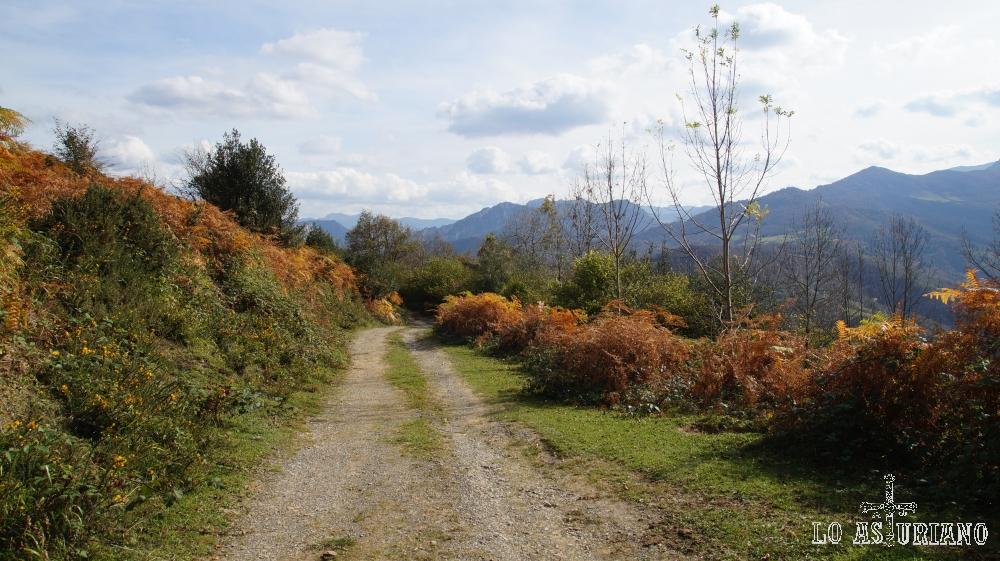 La pista es muy cómoda, ancha, con vistas al valle de Ponga.