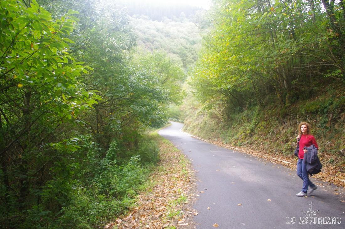 Paseo idílico (puedes subir por carretera o por sendas) entre la localidad de Taramundi y la aldea de Esquíos, donde podrás contemplar un aislado y coqueto pueblito de montaña en un entorno de frondosos bosques.