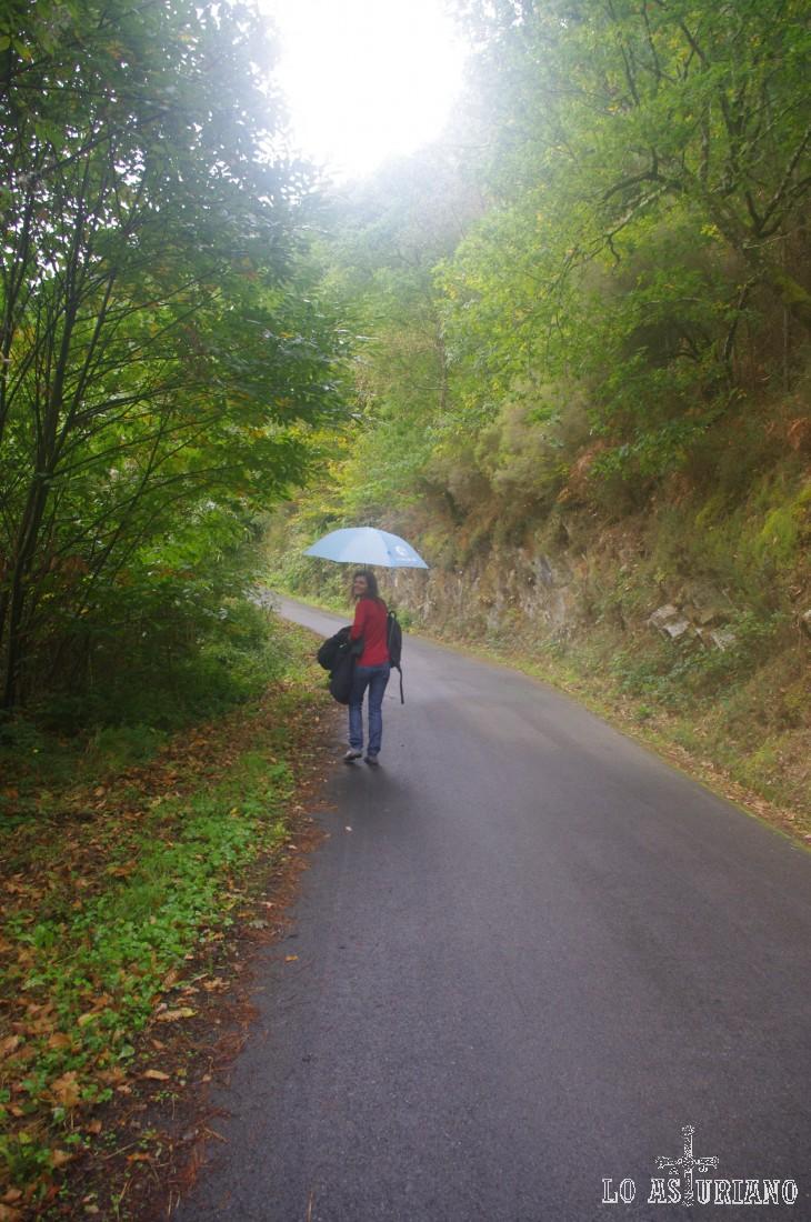 Taramundi, al estar alejado de la costa cantábrica, tiene un clima más duro que en otras zonas. Nosotros gozamos de una temperatura muy agradable (finales de octubre), con lluvia discontinua y chaparrón de despedida al final.