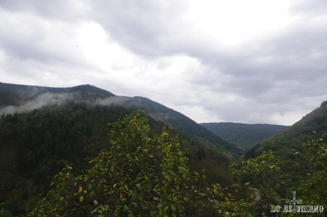 Pico dos Gamieiros, que supera los 700 metros.