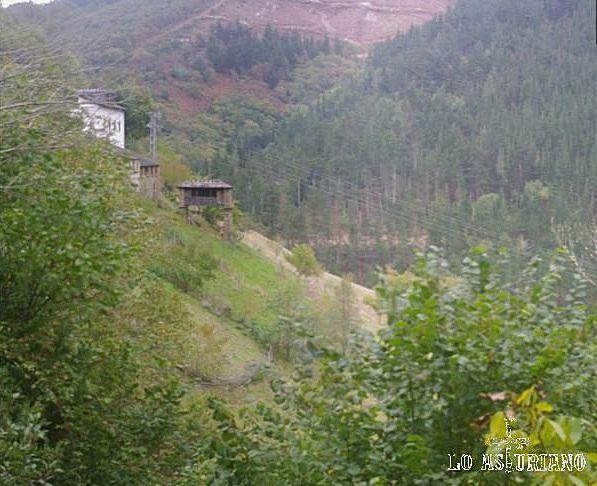 Esquíos, desde la senda que conduce a As Veigas, en Taramundi.