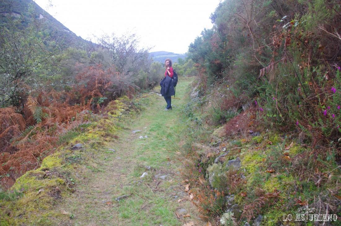 De vez en cuando, la senda se abre y podemos ver las laderas del Cortín, al otro lado del valle del Turía.