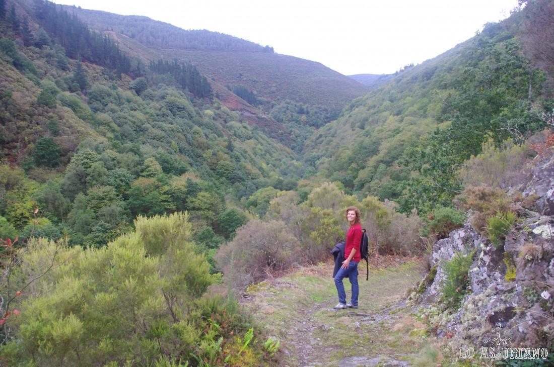 Desde este claro en el bosque, podemos ver las laderas del Cortín, que recorreremos en la vuelta.