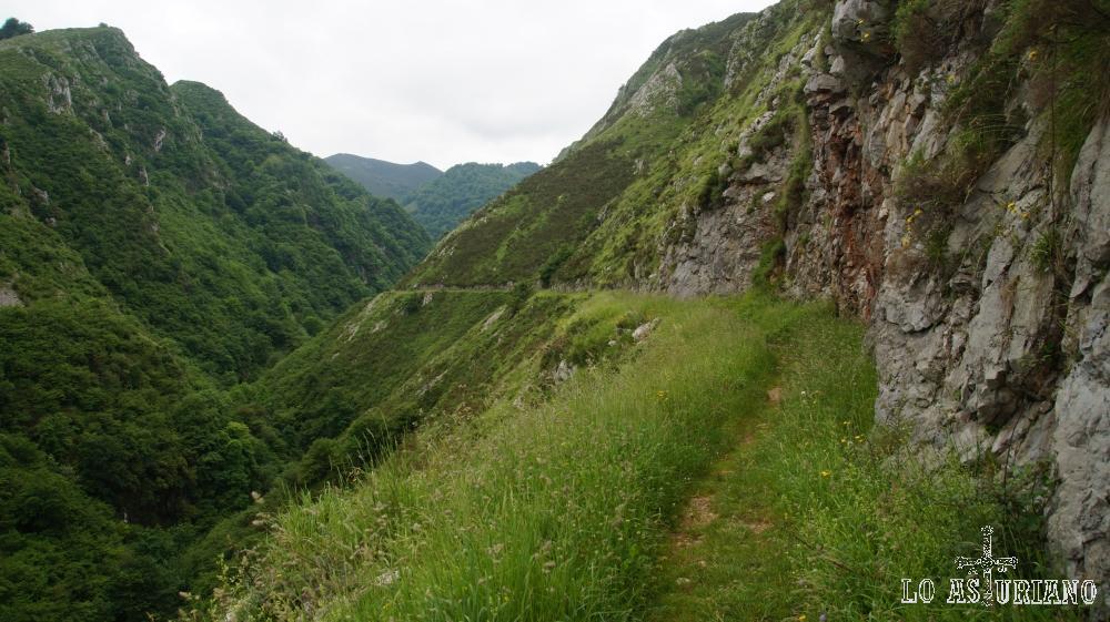 Las Foces del río Pendón, Nava, Asturias.