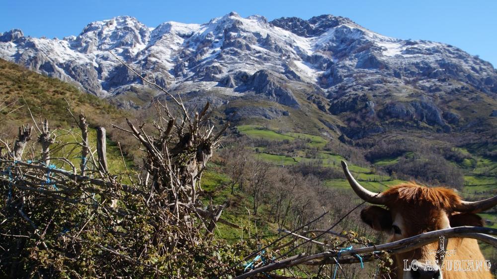 Paisajes del concejo de Aller, Asturias.