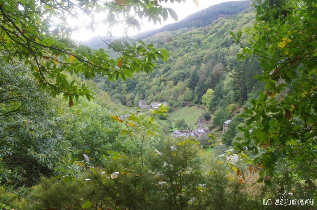 As Veigas desde la ladera del Cortín, camino de Teixois.