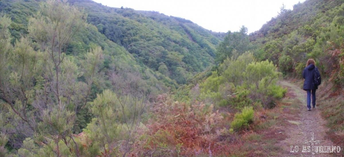 Valle del Turía