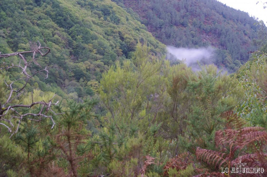 Niebla a mitad ladera del Corno.