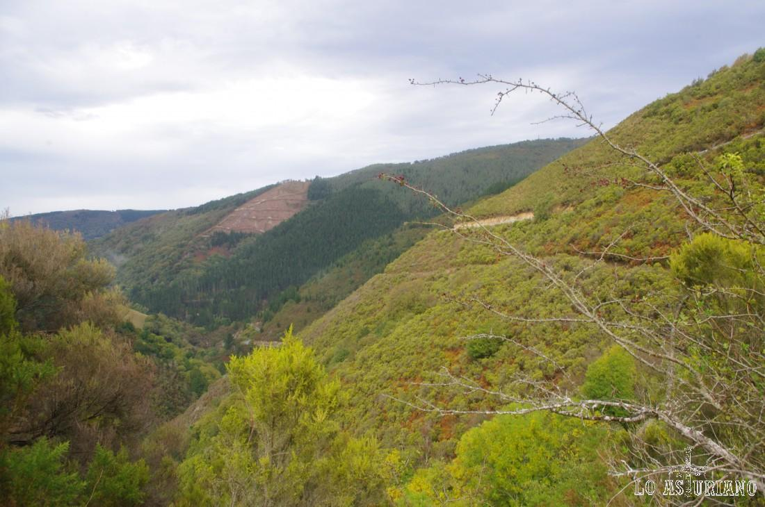 Valle del Turía, dirección Taramundi.