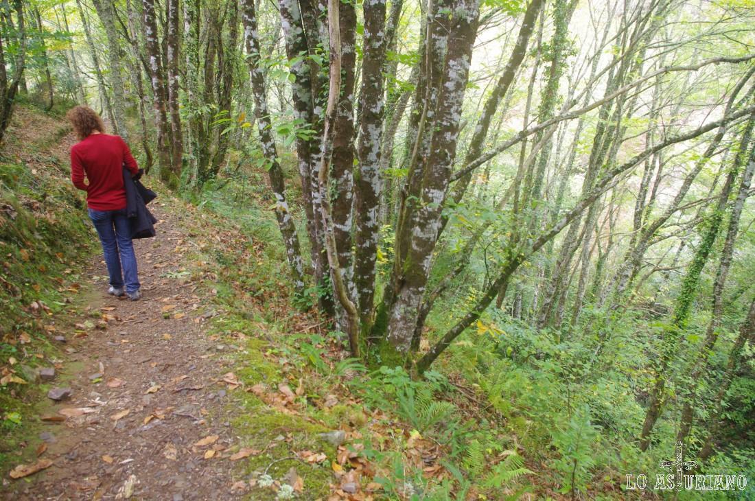 El camino vuelve a ser un precioso paseo por la ribera de As Mestas y luego del Turía.