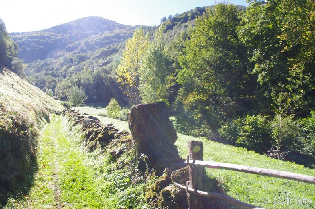 La senda se abre y a la derecha tenemos un prado. Seguimos la senda, siempre bien señalizada y de momento muy sencilla y apenas con desnivel.
