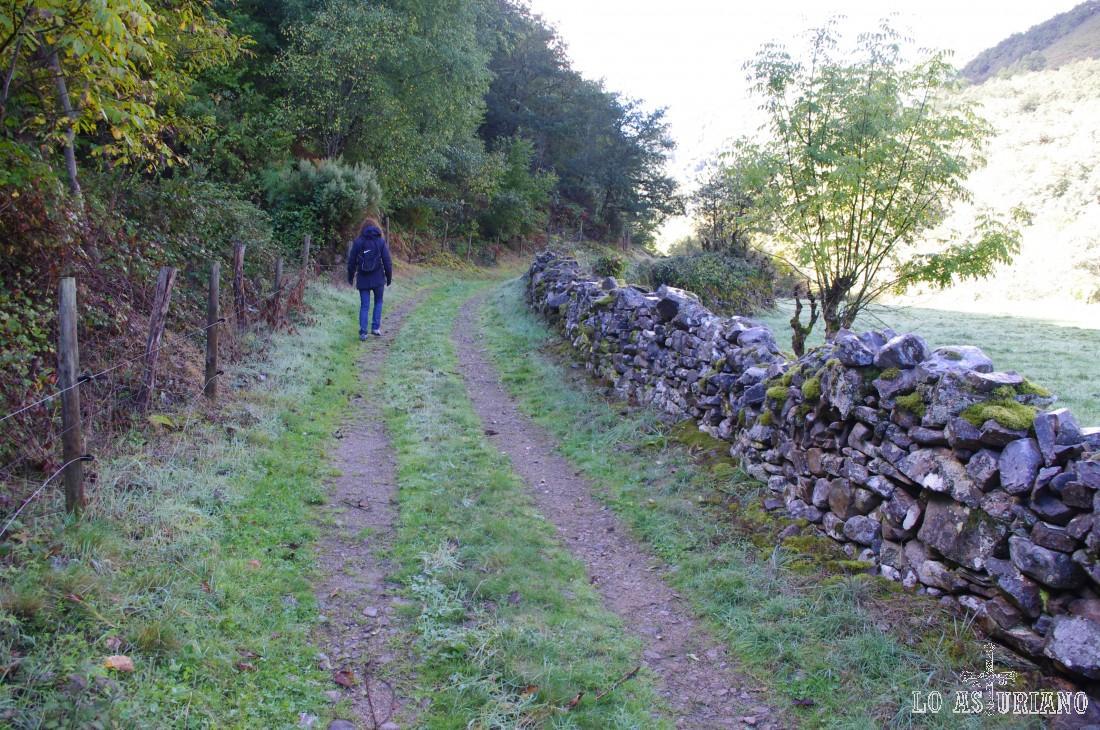 La senda continúa en llano y paralela al valle del Muniellos/Tablizas.