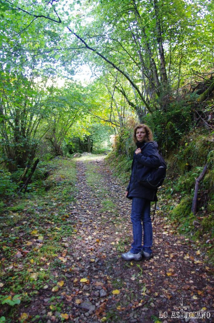 Senda entre La Rebollá y Tallu Rosu, en el bosque de Moal.