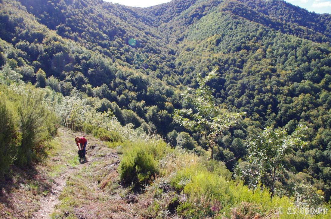 Subida al Montecín