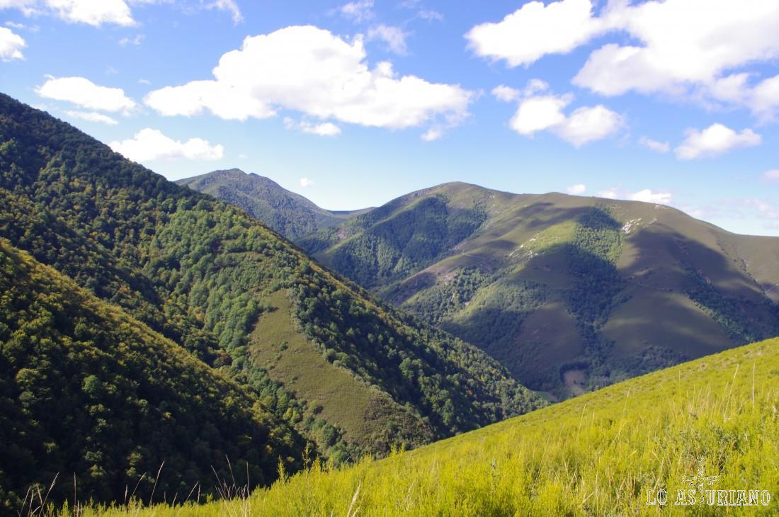 A la izquierda, el bosque de Moal. Al fondo, una parte de Muniellos. A la derecha, la sierra de Oballo.