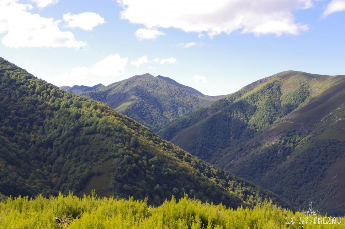 El Connio, Muniellos y el bosque de Moal.